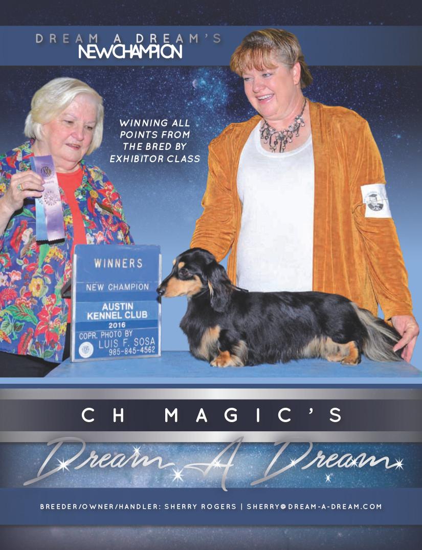 https://www.dream-a-dream.com/dream/wp-content/uploads/2016/05/magicsad.jpg